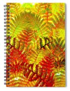 Abstract Fusion 23 Spiral Notebook