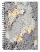 Abstract Tree Bark II Spiral Notebook