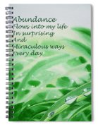 Abundance Affirmation Spiral Notebook