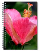 Abundantly Pink Spiral Notebook