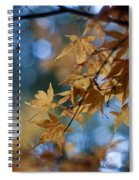 Acer Autumn Spiral Notebook
