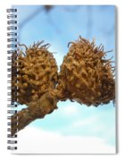 Acorns Have Left The Nest Spiral Notebook