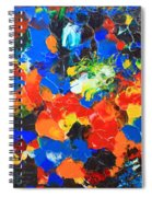 Acrylic Abstract Upon Wood Spiral Notebook