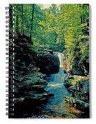 Adams Falls Spiral Notebook