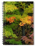 Adirondack Autumn Spiral Notebook