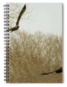 Adult And Immature Bald Eagle Flying Spiral Notebook