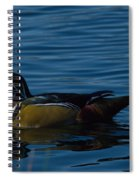 Adult Male Wood Duck Spiral Notebook