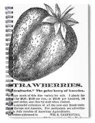 Advertisement: Strawberry Spiral Notebook