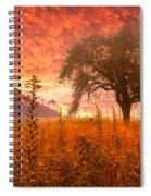 Aflame Spiral Notebook