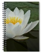 Afloat Spiral Notebook