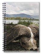 African Cape Buffalo Skull, Ngorongoro Spiral Notebook