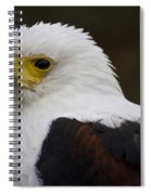 African Fish Eagle 1 Spiral Notebook