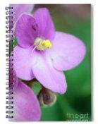 African Violet Flower Spiral Notebook
