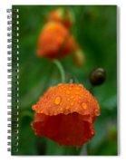 After The Rain 2 Spiral Notebook