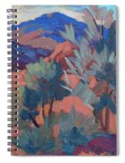 Afternoon Light - Santa Rosa Mountains Spiral Notebook