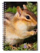 Afternoon Snack - Eastern Chipmunk  Spiral Notebook