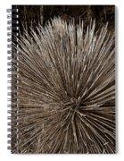 Agave 1 Spiral Notebook