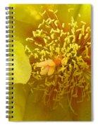 Agave 2010 Spiral Notebook