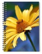 Aging Beauty Spiral Notebook