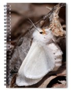 Agreeable Tiger Moth With Ant Spiral Notebook