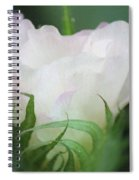 Agriculture - Cotton Bloom Spiral Notebook