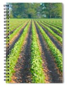 Agriculture-soybeans 5 Spiral Notebook