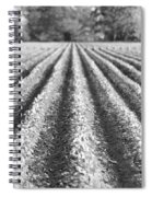 Agriculture-soybeans 6 Spiral Notebook