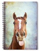 Ahhhhhh Spiral Notebook