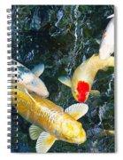 Air Koi 7608 Spiral Notebook