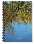 Airplane Reflections Spiral Notebook