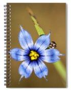Alabama Blue-eyed Grass Wildflower - Sisyrinchium Angustifolium Spiral Notebook