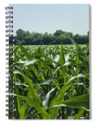 Alabama Field Corn Crop Spiral Notebook