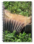 Alabama Road Kill Spiral Notebook