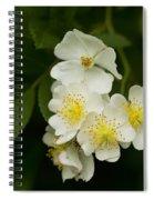 Alabama Wildflower Roses - Rosa Multiflora Spiral Notebook