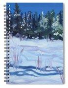 Alaska Day Spiral Notebook