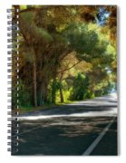 Albufera Road To El Palmar. Valencia. Spain Spiral Notebook