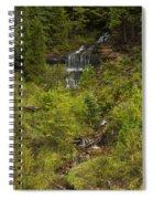 Alger Falls 1 Spiral Notebook