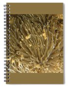 Alien Life Form Spiral Notebook