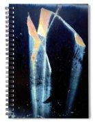 Alien-looking Rust Spiral Notebook