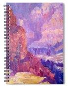 All Canyon Spiral Notebook