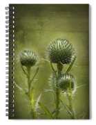All Prickles And Stings Spiral Notebook
