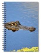 Alligator Afloat Spiral Notebook