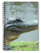 Alligator Cameron Prairie Nwr La Spiral Notebook