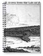 Alligator Spiral Notebook