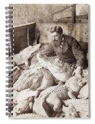 Alligators & Caymans Spiral Notebook