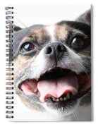 Almost A Jack Russell Spiral Notebook