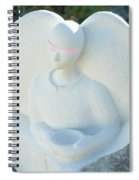 Alms For Angels Spiral Notebook