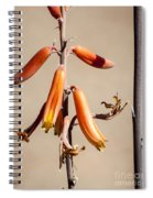 Aloe Flower And Stem Spiral Notebook