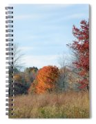 Alone With Autumn Spiral Notebook