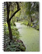 Along The Stream Spiral Notebook